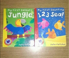 Toy and Books bundle