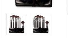 Cosmetic bag and brushes