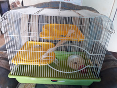 Big Hamsters cage