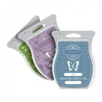 Toiletries scentsy