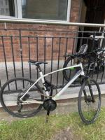 Bicycle intuitive gamma 13