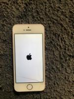 iPhone 5s with charger lead and head